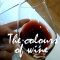 Wine tasting – The colours of wine